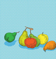 Fruits composition vector image