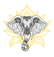 Head of a elephant boho design Indian God Ganesha vector image