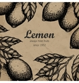 Lemon tree design template Hand drawn lemon fruit vector image