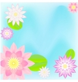pink lotus card background vector image vector image