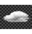 Realistic cloud vector image vector image