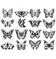 butterfly stylized exotic butterflies silhouettes vector image vector image