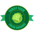 cabbage logo vector image
