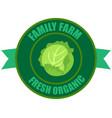 cabbage logo vector image vector image