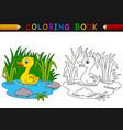 cartoon duck coloring book vector image vector image