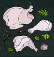 chicken or turkey body parts set fowl meat vector image vector image
