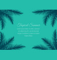 frame with palm leaves vector image vector image