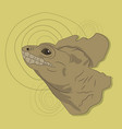 lizard portrait on a colored background vector image vector image
