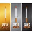pack cigarettes vector image