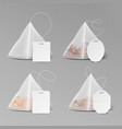 pyramid shape tea bag set mock up with empty vector image