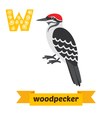 Woodpecker W letter Cute children animal alphabet vector image vector image
