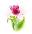 a tulip vector image