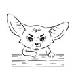 black and white a funny fennec fox who vector image vector image