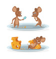 cartoon mice on cheese plate vector image vector image