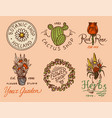 Flower shop emblems and bright logo vintage