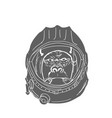 gorilla head in spaceman helmet hand drawn vector image