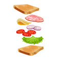 toasted loaf of bread with lettuce salad fresh vector image vector image