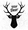 wild deer logo with grunge effect vector image