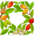 cocoa branches frame on white background vector image