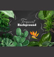 colored tropical chalkboard vector image vector image