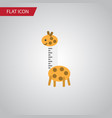 isolated giraffe flat icon toy element can vector image vector image