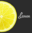 Just lemon vector image vector image