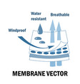 membrane fabric sign vector image
