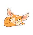 sleeping cartoon fennec fox cute kawaii character vector image
