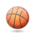 basketball ball isolated vector image