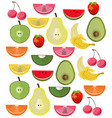 fresh exotic fruits set collection vector image vector image