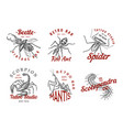 set of insects logos vintage pets labels for bar vector image vector image