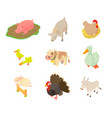 domestic animals icon set cartoon style vector image