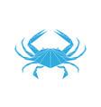 blue crab vector image vector image