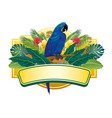 blue macaw tropical design vector image vector image