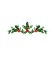 christmas holiday devider vector image vector image