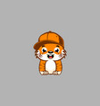 cute baby tiger on grey background vector image