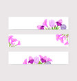 floral lilac and violet blossom flowers on white vector image vector image