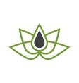 nature essence oil logo vector image