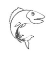 blurred sketch silhouette of trout fish vector image vector image