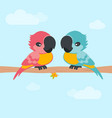 card with parrots vector image vector image