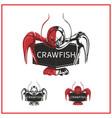 crawfish logo vector image vector image