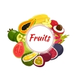 Exotic tropical fruit round badge vector image vector image