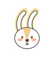 forest rabbit animal wild fauna natural vector image vector image