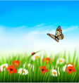 Nature summer colorful flowers with butterfly vector image vector image
