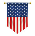 united states america pennant vector image vector image