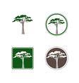 Acacia Tree Logo