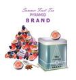 fruits tea realistic packaging pyramid vector image