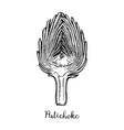 ink sketch of sliced artichoke vector image