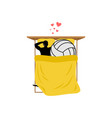 lover volleyball guy and ball in bed lovers in vector image vector image