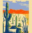 saguaro national park with giant saguaro cactus vector image